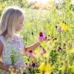 imagem de uma garota feliz em meio as flores em um lindo dia de sol