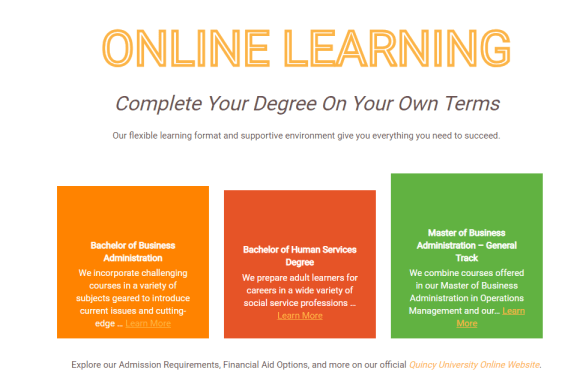Q-You decide: Do you like online classes?