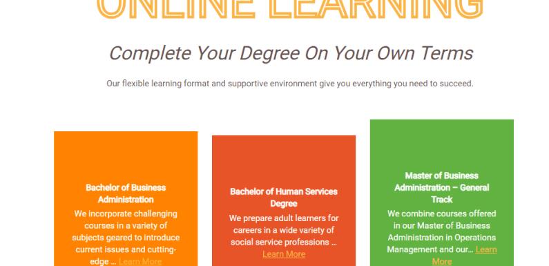 Q-You decide: Do you like online classes?