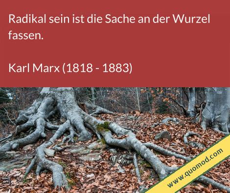 Zitat von Karl Marx: Radikal sein ist die Sache an der Wurzel fassen.
