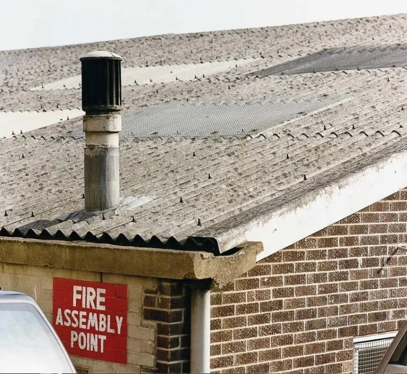 Asbestos Roof Panels Often Found On Garage And Shed Roofs