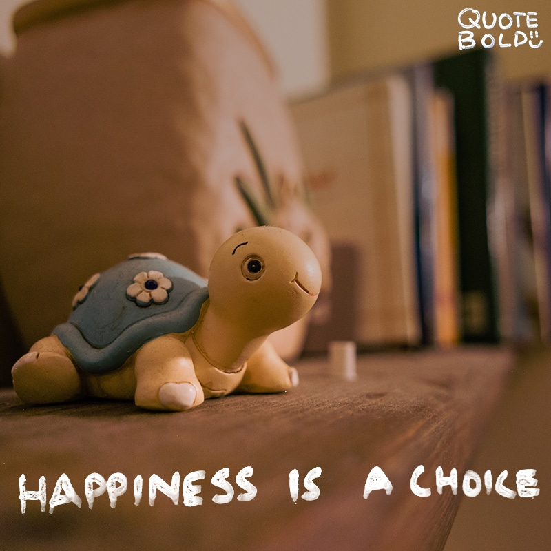 """quote """"Happiness is a choice. Peace is a state of mind. Both are free!"""" - Amy Leigh Mercree"""