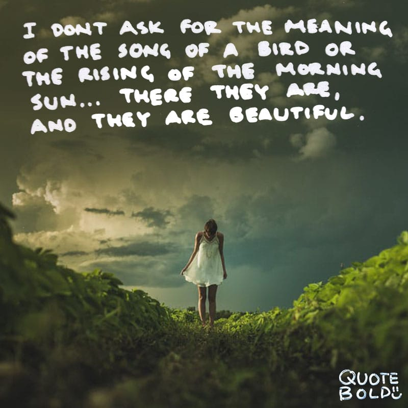 "morning sayings ""I don't ask for the meaning of the song of a bird or the rising of the sun on a misty morning. There they are, and they are beautiful."" — Pete Hamill"