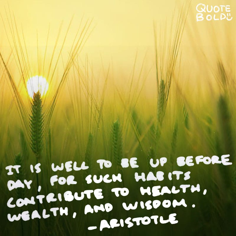 "quote ""It is well to be up before daybreak, for such habits contribute to health, wealth, and wisdom."" — Aristotle"