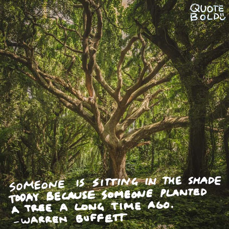 "planning quotes ""Someone is sitting in the shade today because someone planted a tree a long time ago."" - Warren Buffett"