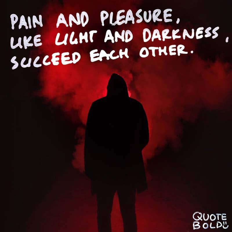 "quote ""Pain and pleasure, like light and darkness, succeed each other."" - Laurence Sterne"