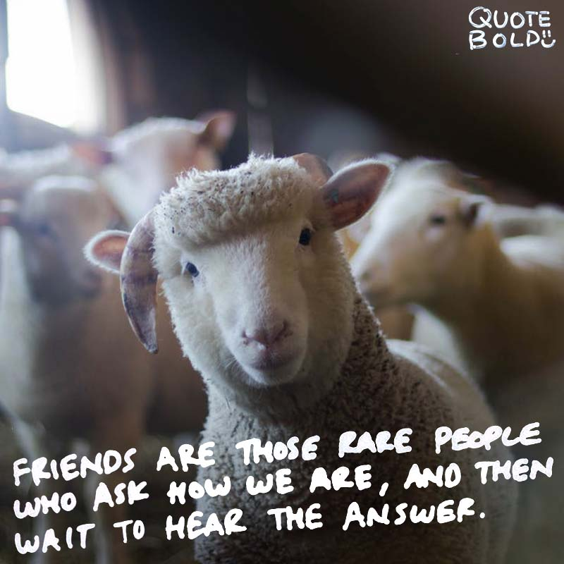 "quote ""Friends are those rare people who ask how we are, and then wait to hear the answer."" — Ed Cunningham"