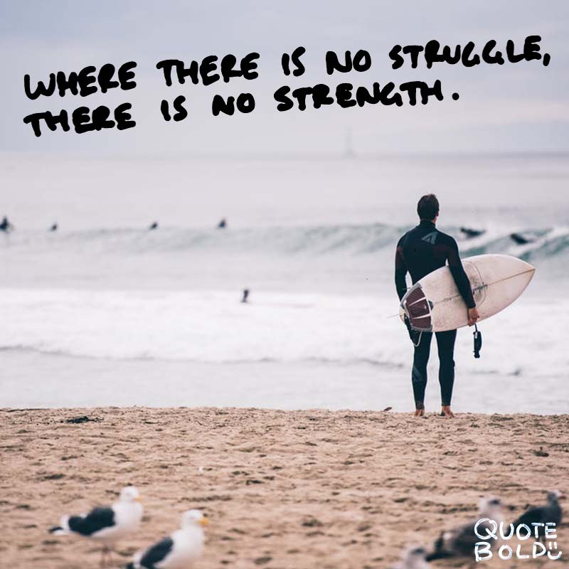 "quotes being strong - Oprah Winfrey ""Where there is no struggle, there is no strength."""