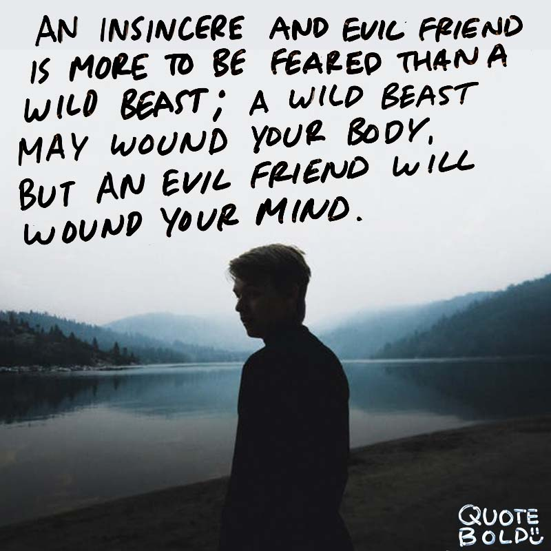 """best friend quotes image - Buddha """"An insincere and evil friend is more to be feared than a wild beast; a wild beast may wound your body, but an evil friend will wound your mind."""""""