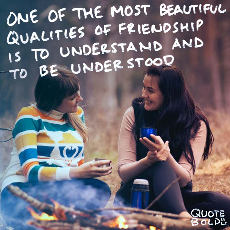 """best friend quotes image - Lucius Annaeus Seneca """"One of the most beautiful qualities of true friendship is to understand and to be understood."""""""