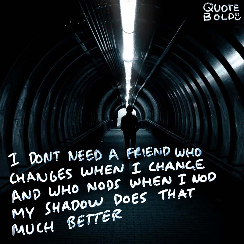 """best friend quotes image - Plutarch """"I don't need a friend who changes when I change and who nods when I nod; my shadow does that much better."""""""