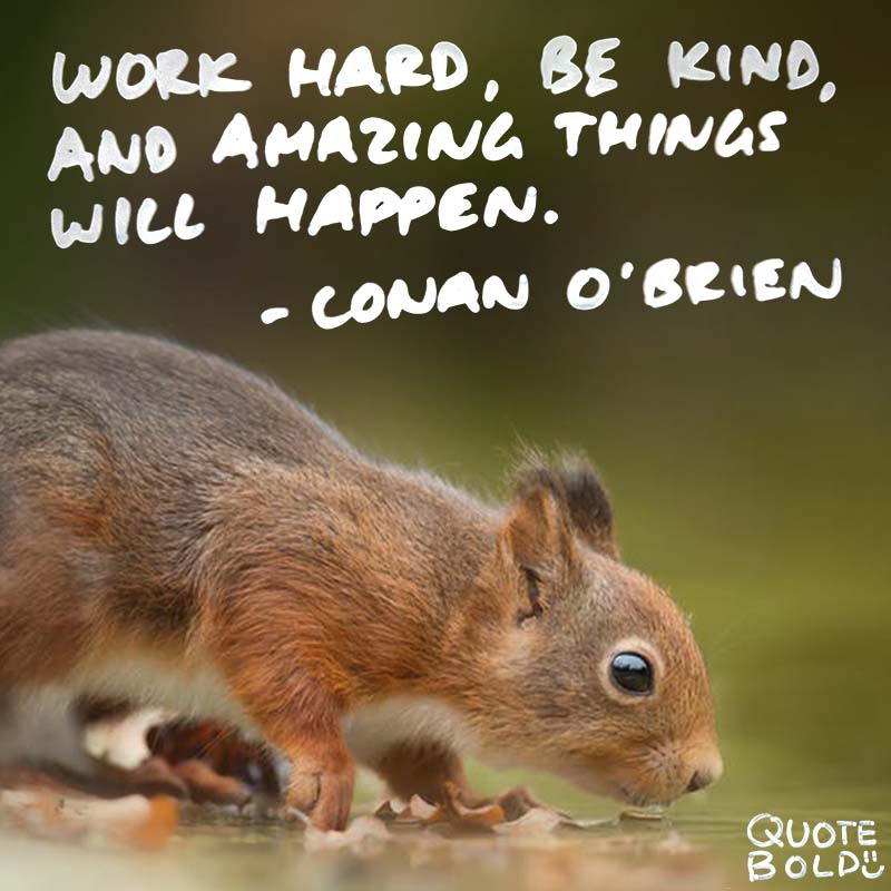 "inspirational quote for work - Conan O Brien ""Work hard, be kind, and amazing things will happen."""