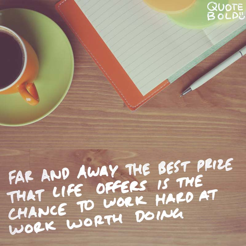 "inspirational quote - Theodore Roosevelt ""Far and away the best prize that life offers is the chance to work hard at work worth doing."""
