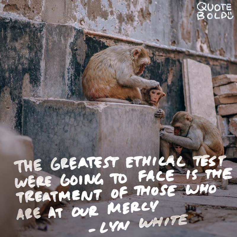 """""""The greatest ethical test that we're ever going to face is the treatment of those who are at our mercy."""" quotes - Lyn White"""