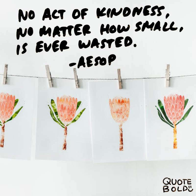 """""""No act of kindness, no matter how small, is ever wasted."""" quotes - aesop"""