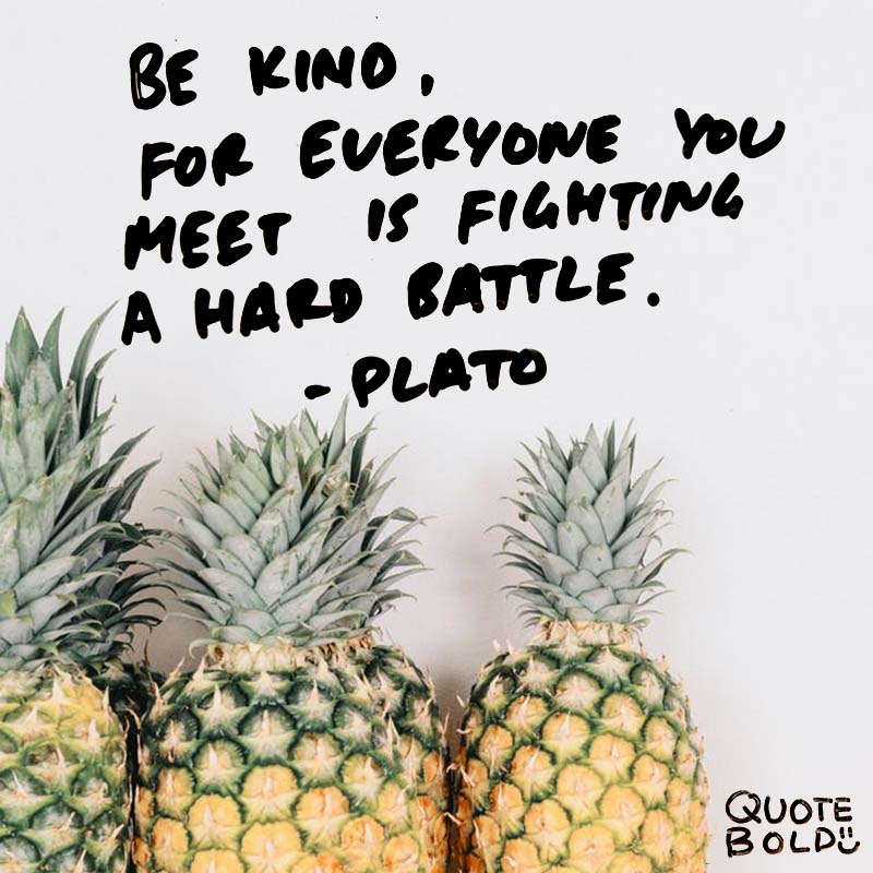 """""""Be kind, for everyone you meet is fighting a hard battle."""" quotes - plato"""