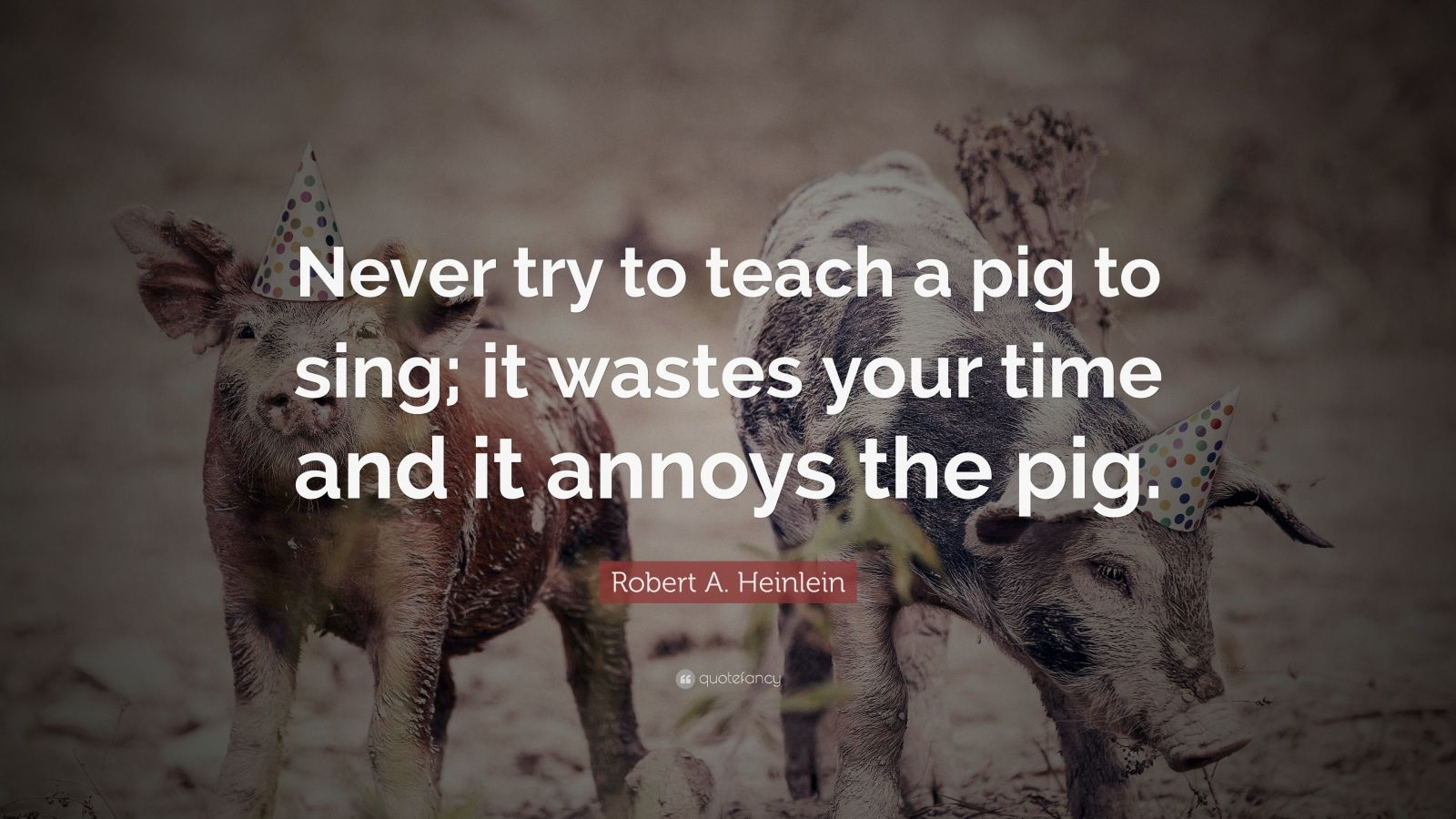 Funny Quotes  26 wallpapers    Quotefancy Funny Quotes     Never try to teach a pig to sing  it wastes your