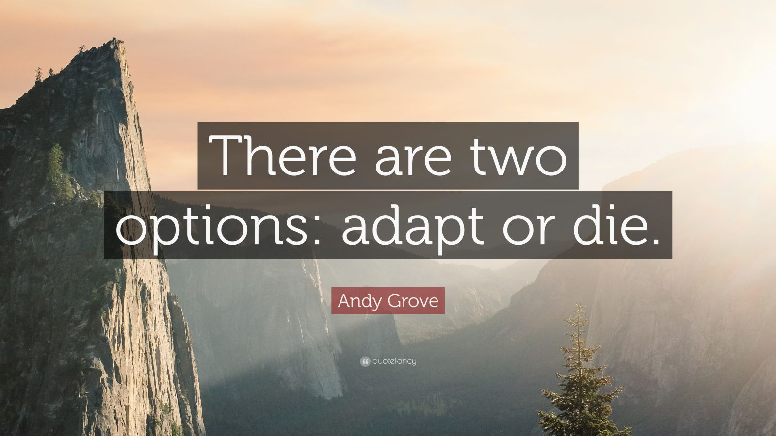 Andy Grove Quote There Are Two Options Adapt Or