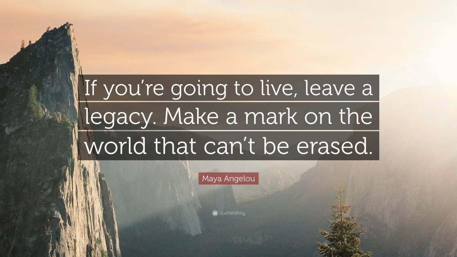 Maya Angelou Quote If You Re Going To Live Leave A Legacy Make A Mark On The World That Can