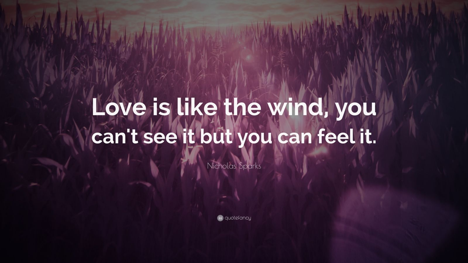 Love Quotes  26 wallpapers    Quotefancy Love Quotes     Love is like the wind  you can t see it