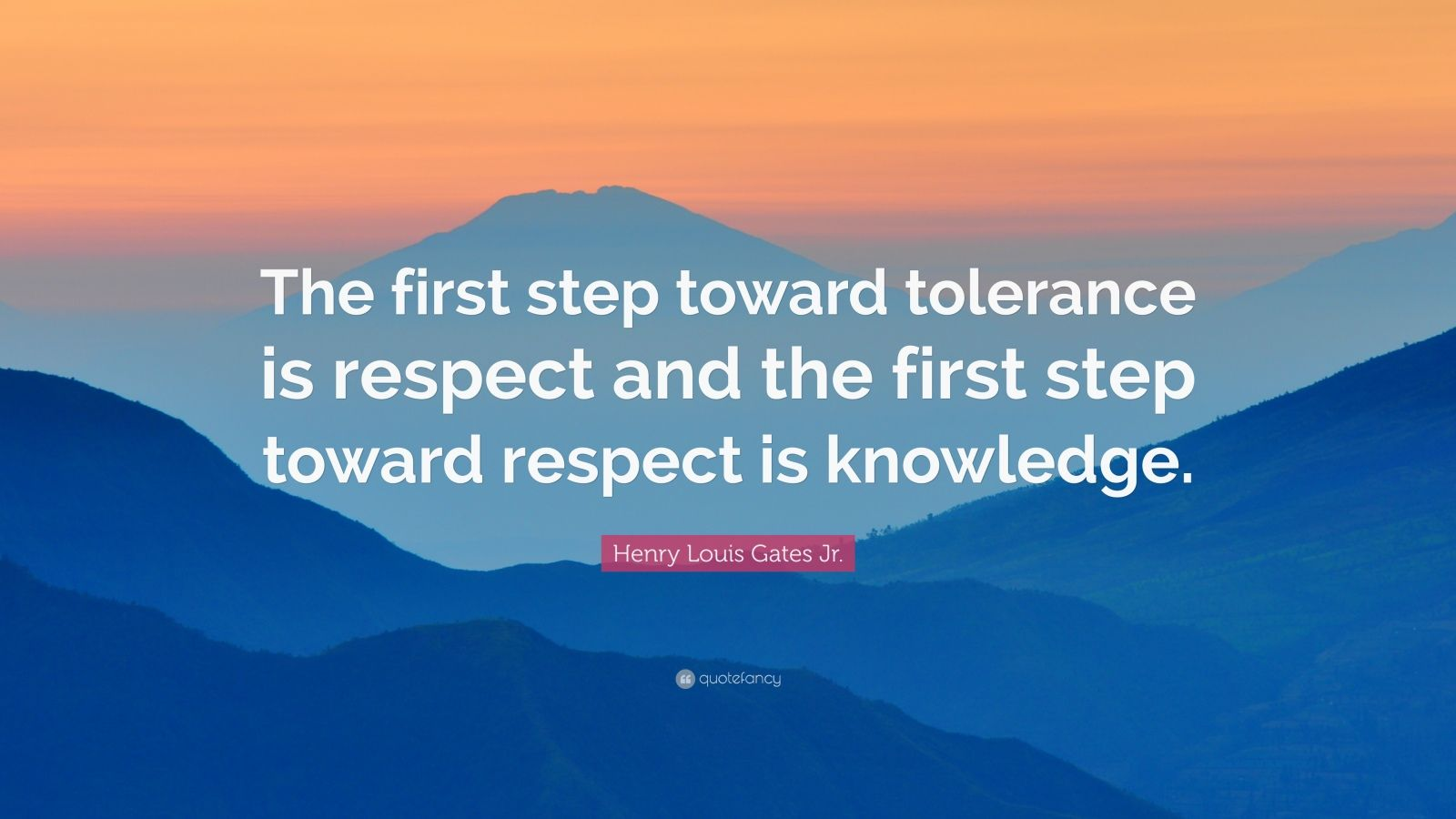 Henry Louis Gates Jr Quote The First Step Toward