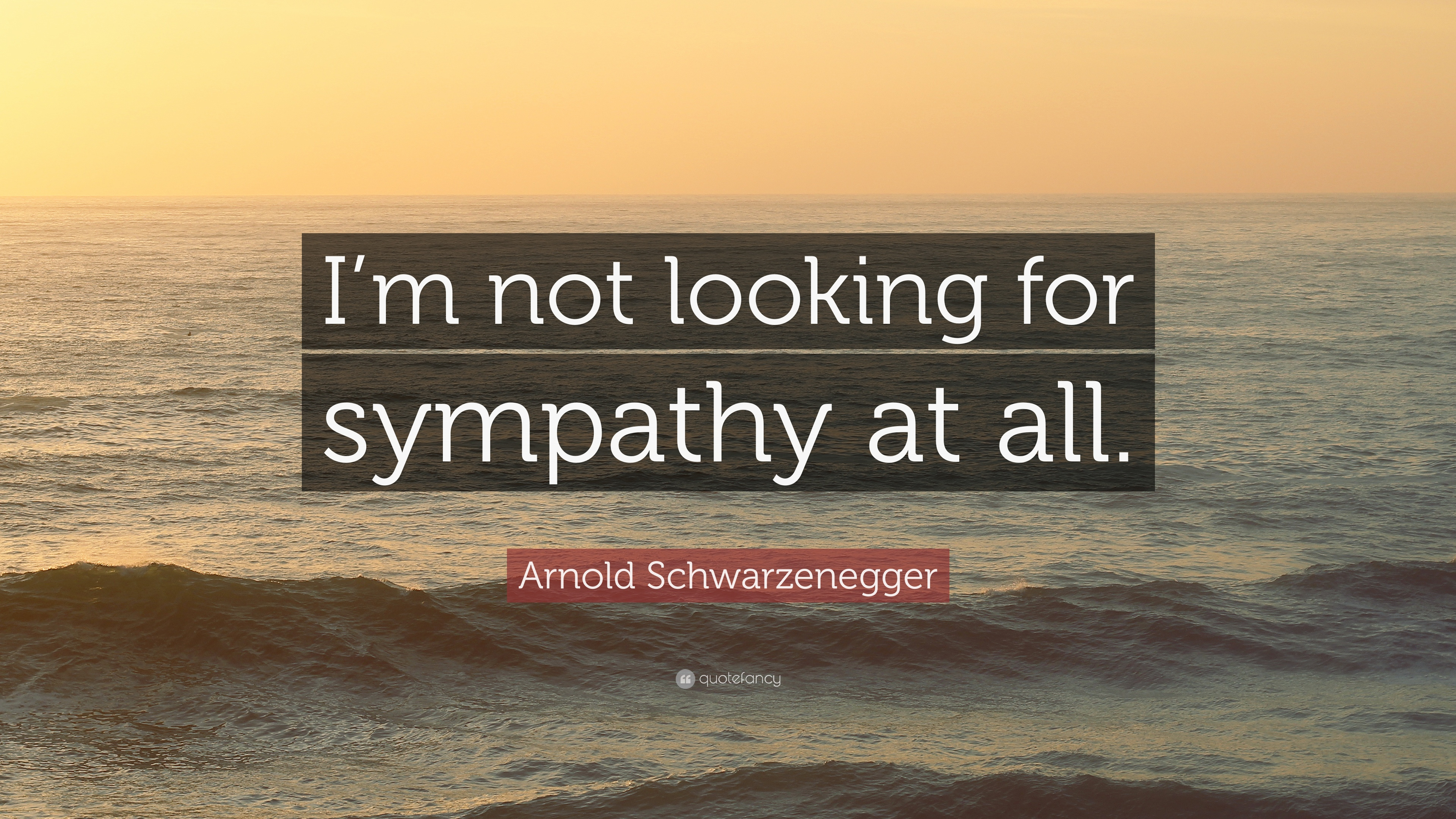 Arnold Schwarzenegger Quote I M Not Looking For Sympathy At All 12 Wallpapers