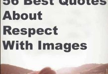 Best respect quotes images sayings