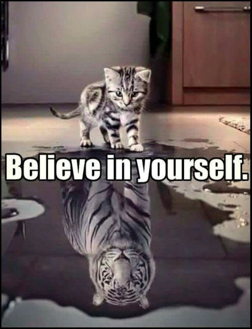 believe your eyes quotes