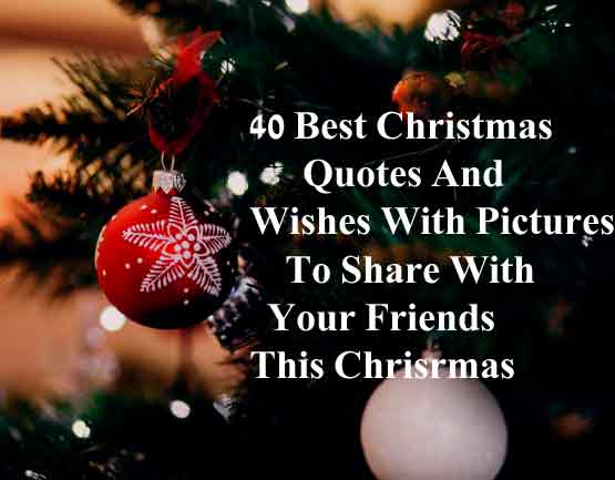 40 Best Christmas Quotes And Wishes With Pictures To Share ...