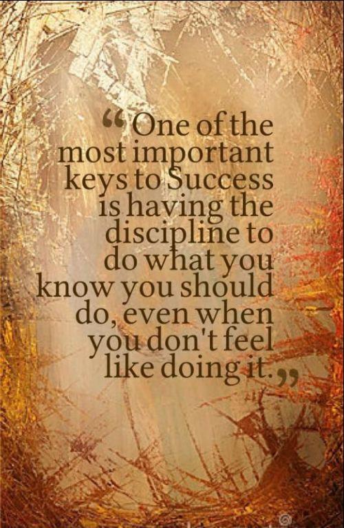 quotes on discipline