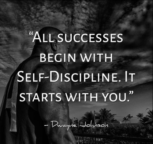 discipline is everything quotes