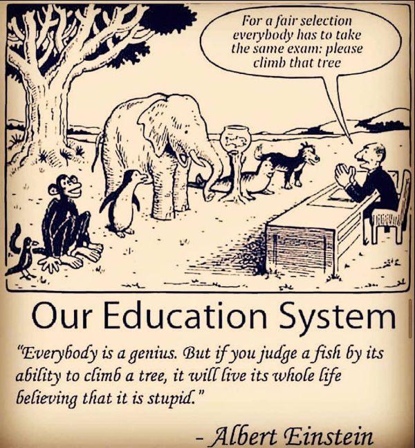 education quotes dr seuss