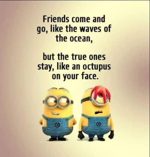 friendship quotes vs. love