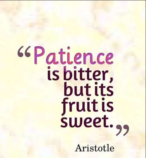 patience negative quotes