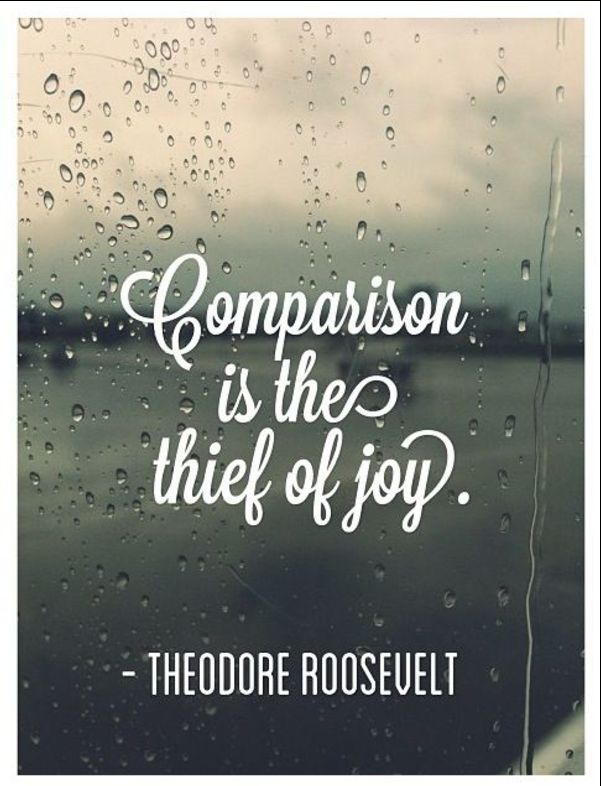 theodore roosevelt inspirational quotes