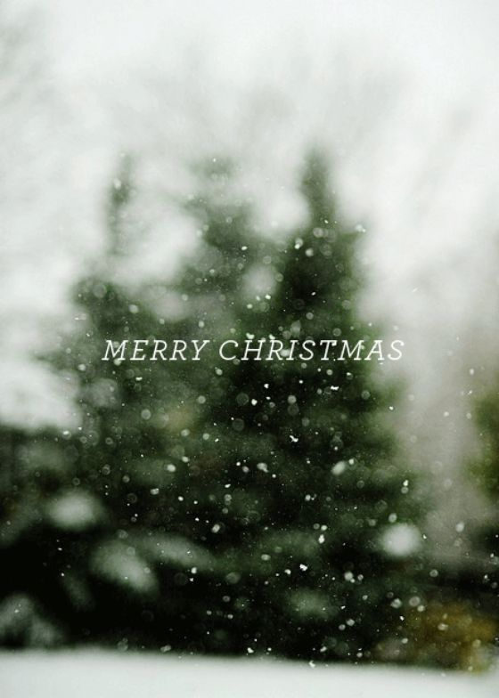 christmas wishes card quotes