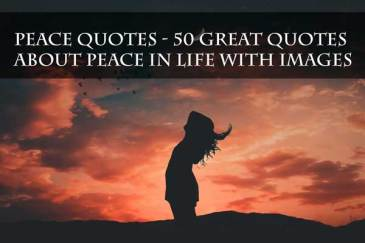 50 Great Peace Quotes About Life With Images