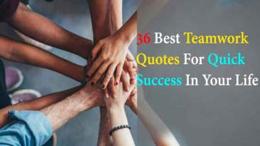 36 Best Teamwork Quotes For Quick Success In Your Life