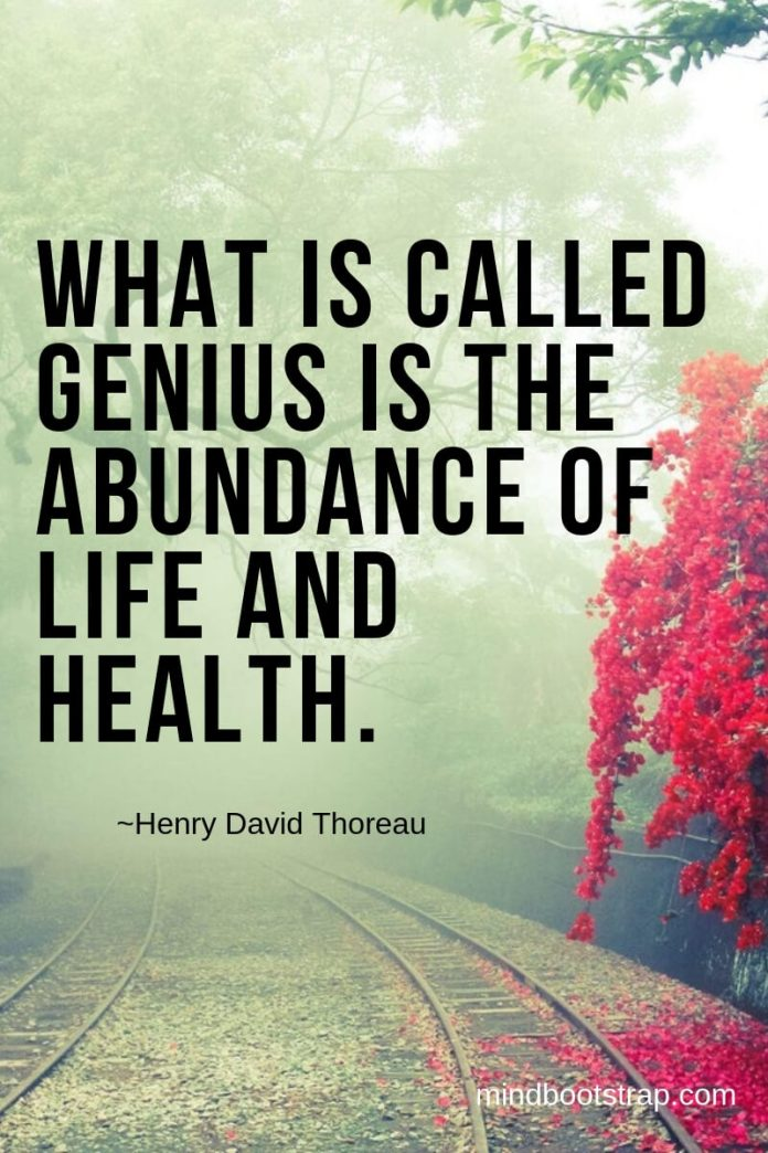 Henry David Thoreau Quotes About Life | What is called genius is the abundance of life and health. -Henry David Thoreau