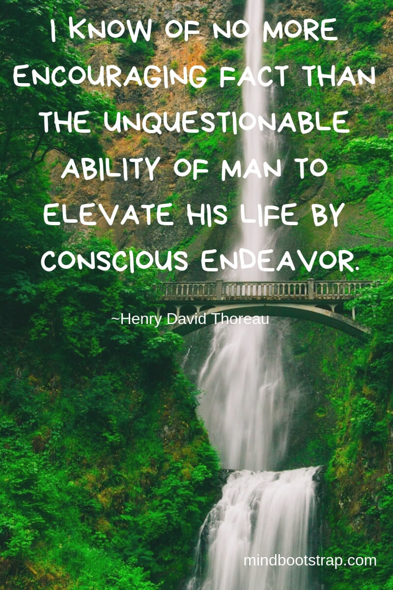 Henry David Thoreau Quotes About Life | I know of no more encouraging fact than the unquestionable ability of man to elevate his life by conscious endeavor. -Henry David Thoreau