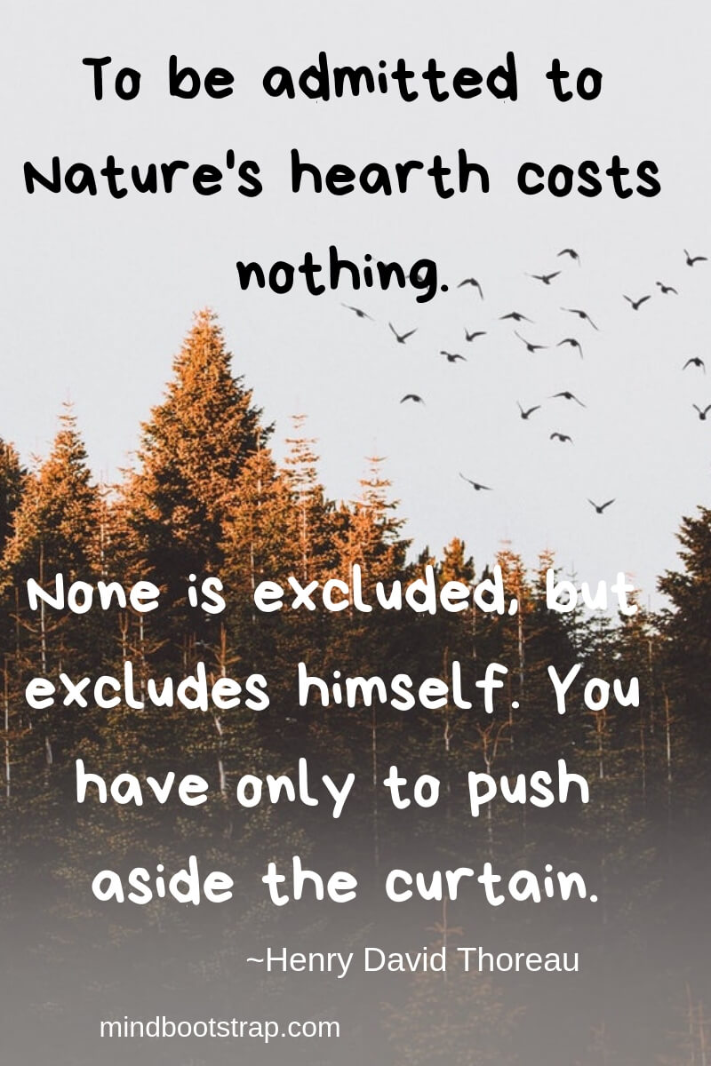 Henry David Thoreau Quotes About Nature | To be admitted to Nature's hearth costs nothing. None is excluded, but excludes himself. You have only to push aside the curtain. -Henry David Thoreau