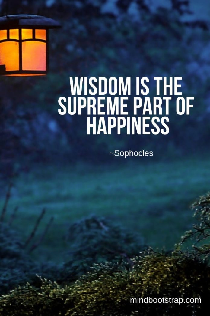 Wisdom is the supreme part of happiness ~Sophocles