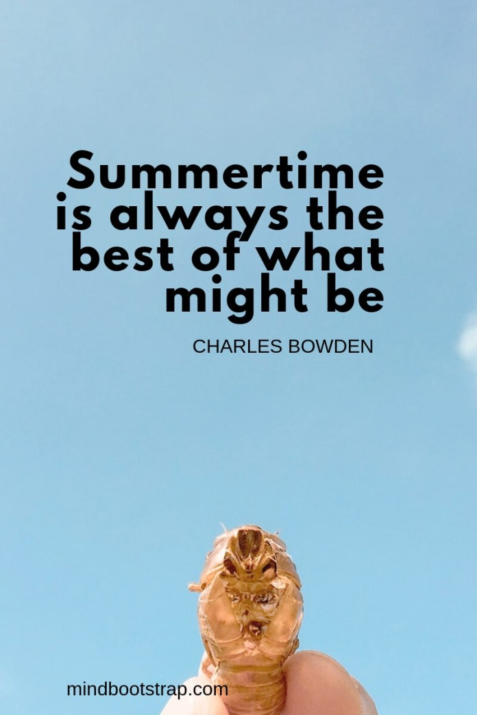 Summer quotes Summertime is always the best of what might be. ~Charles Bowden