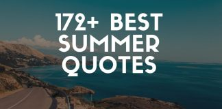 best summer quotes and sayings