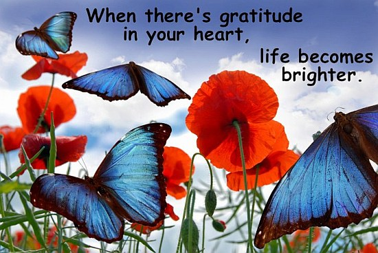 Image result for images of a heart of gratitude