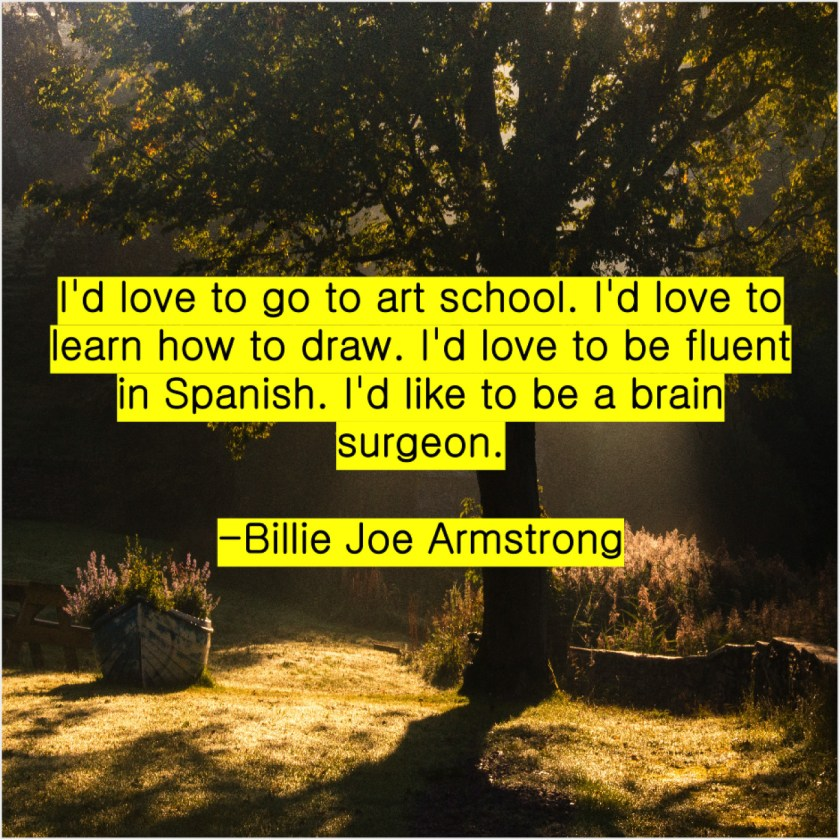 Billie Joe Armstrong – I'd love to go to… – Quote Pals