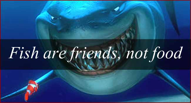 Image result for fish are friends