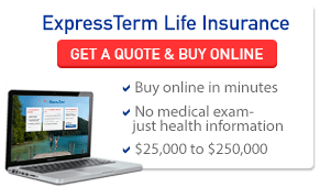 Term Life Insurance No Medical Exam Online Quote Extraordinary Aaa Term Life Insurance Quotes 05  Quotesbae