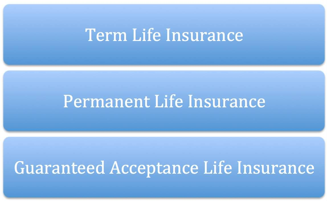 Whole Life Insurance Quotes 11 17 Best Ideas About Rates On
