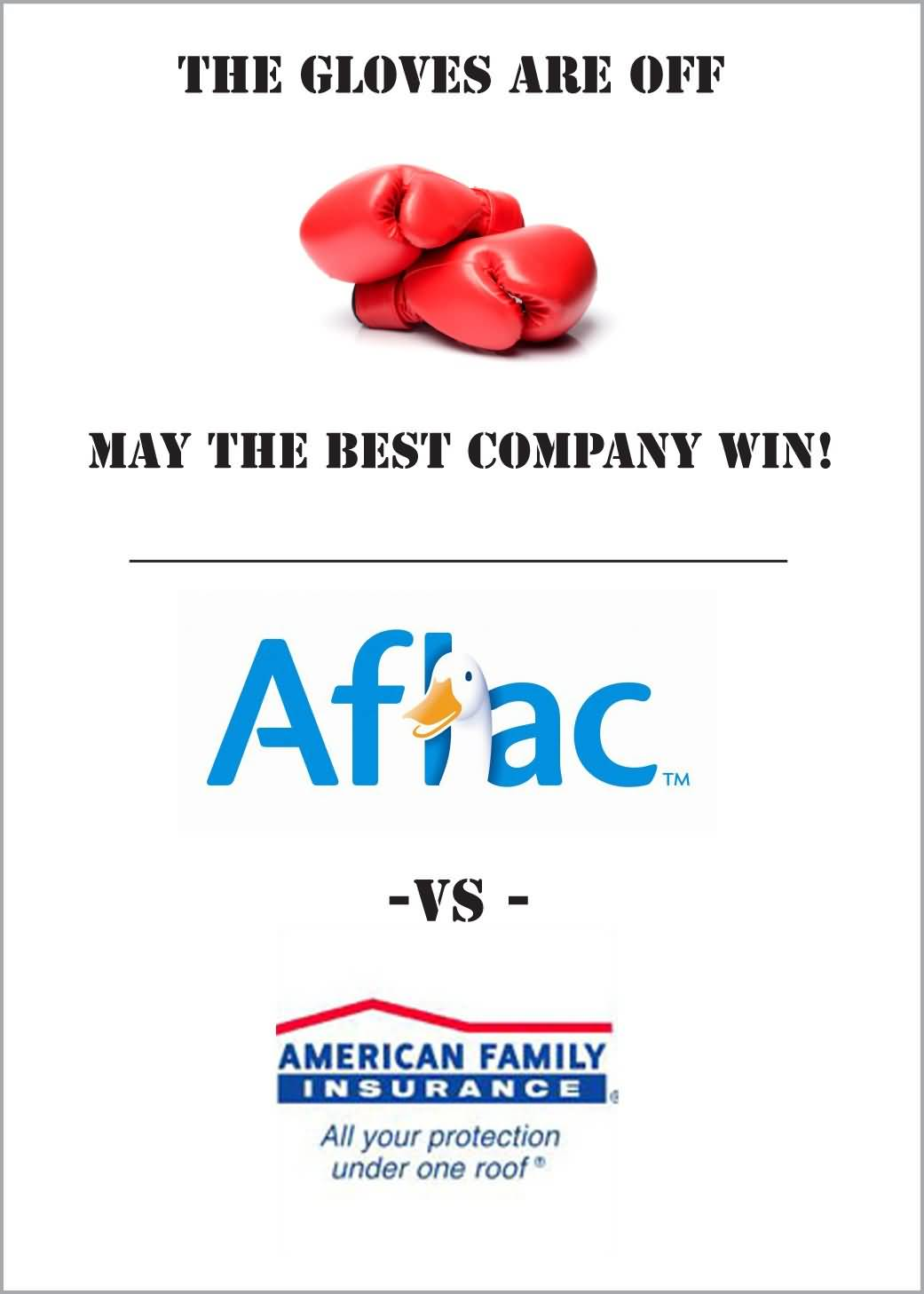 Aflac Life Insurance Quotes Glamorous Aflac Life Insurance Quotes 13  Quotesbae
